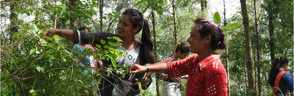 forest conservation climate change work innovation youth young women in Nepal forests